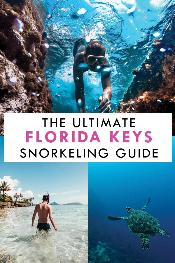 Ultimate Florida Keys Snorkeling Guide Pin