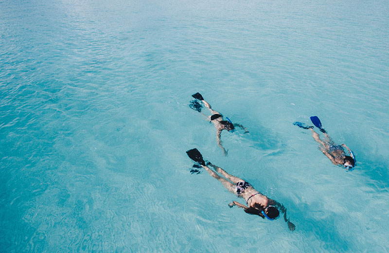 Florida Keys snorkelers