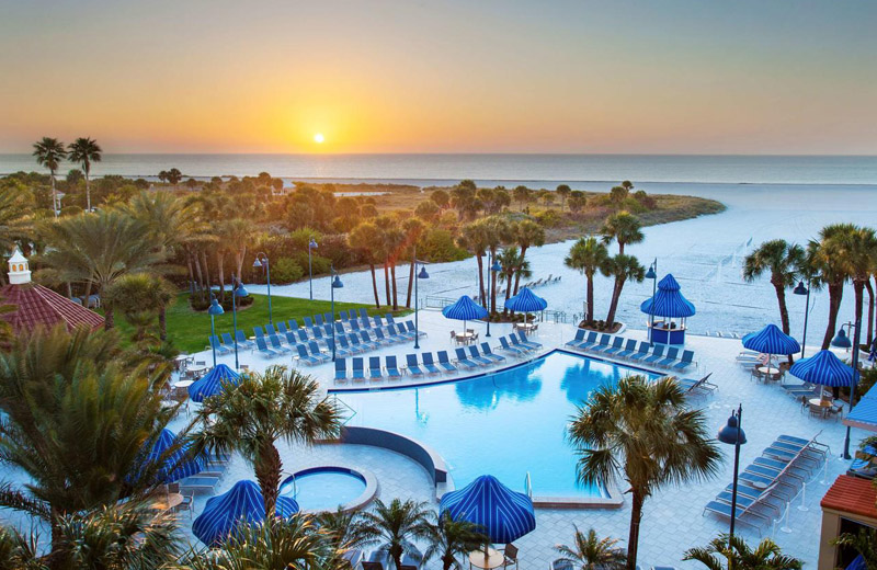 Sheraton Sand Key Pool Clearwater Beach Resort