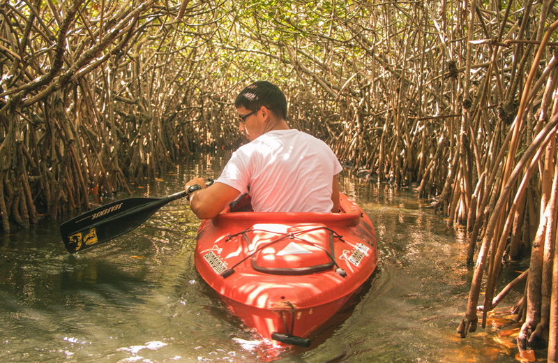 Kayaking Everglades National Park