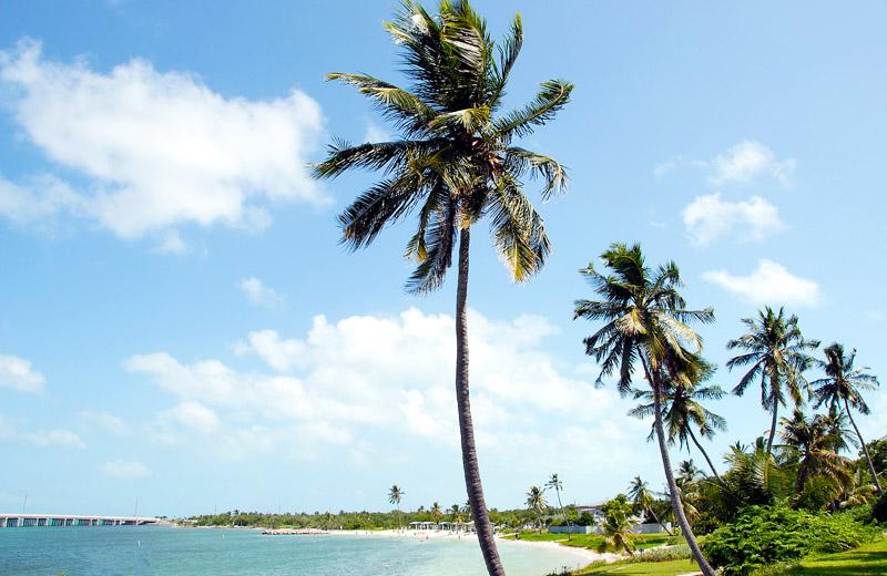 Calusa Beach Florida Keys